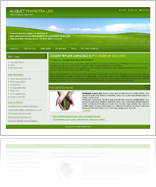 Green company template